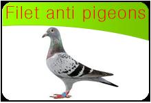 filet anti pigeons votre protection anti pigeon sur mesure. Black Bedroom Furniture Sets. Home Design Ideas
